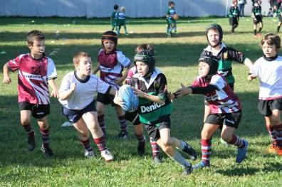 U8 Rugby Cesano 2017 (18)