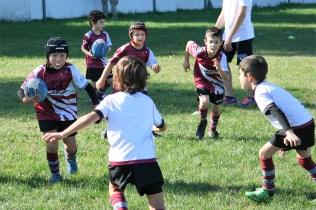 U8 Rugby Cesano 2017 (21)
