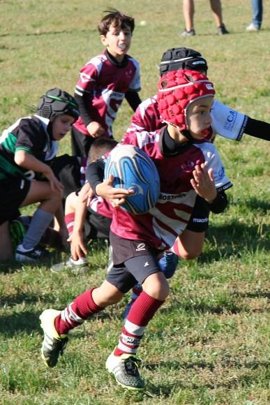 U8 Rugby Cesano 2017 (26)