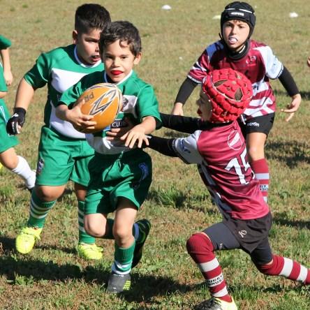 U8 Rugby Cesano 2017 (31)