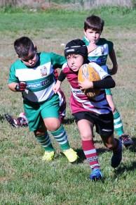 U8 Rugby Cesano 2017 (47)