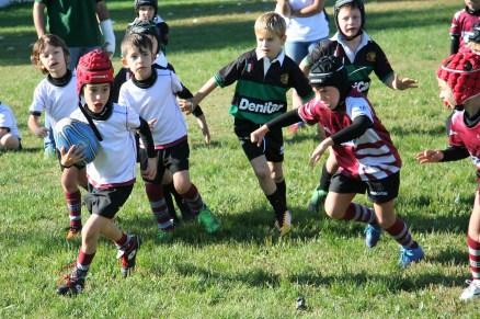 U8 Rugby Cesano 2017 (6)