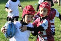 U8 Rugby Cesano 2017 (9)
