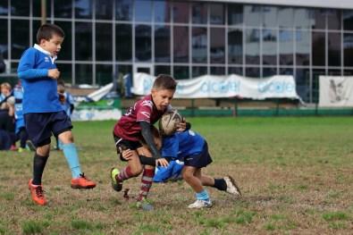 9336 - U8 Torneo CSN