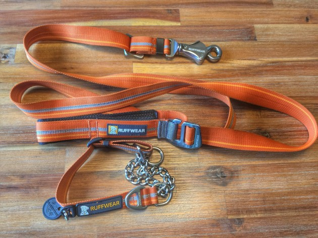Condition Your Hunting Dog: Scents, Guns, and E-Collars