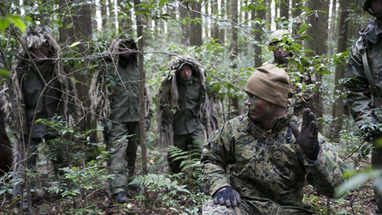 Watch: U.S. Marine and Japanese Scout Snipers conduct Stalk Training