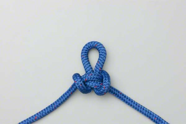 6 survival knots you should know how to tie