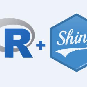 Loan Robinson – R Shiny Builder/ Statistician/ Programmer/ Data