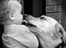 kids_pets_funny_pics_3