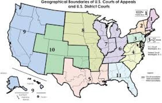 You Are Here | Middle District of Florida | United States District Court
