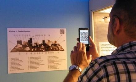 """El MUPE incorpora codis QR per a ampliar la informació de la seua """"sala de conchas"""" actuals"""