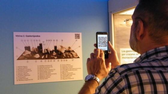 El MUPE incorpora códigos QR para ampliar la información de su sala de conchas actuales