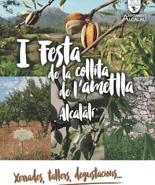 "Alcalalí celebra la ""I Festa de la Collita de l'Ametlla"""