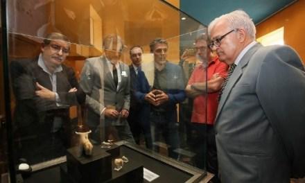 El MARQ expone por primera vez las figurillas de toros de la Edad del Bronce halladas en el yacimiento callosino de Laderas del Castillo