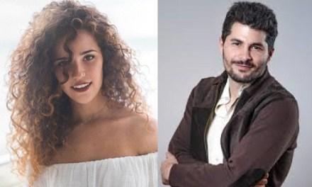 El consell comarcal de la Marina Baixa lluita contra la violència de gènere des del cinema realitzat per dones professionals del sector