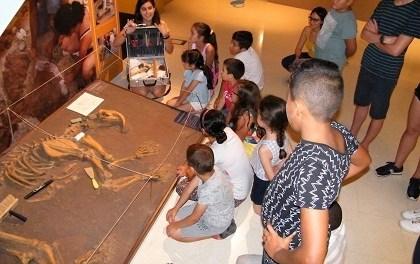 El MUPE celebra sus 14 años como el único museo exclusivo de paleontología de toda la provincia de Alicante
