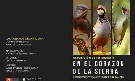 """La fauna comarcal invade el Jardín de la Música de Elda a través de la exposición fotográfica """"En el corazón de la sierra"""""""