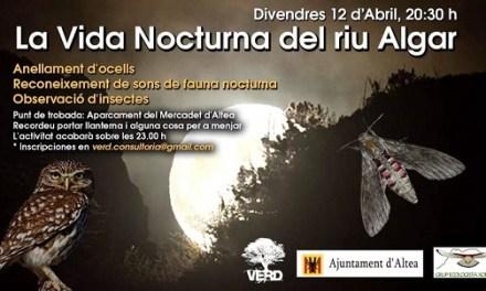 Medi Ambient organitza una ruta per conèixer les aus nocturnes i les papallones d'Altea