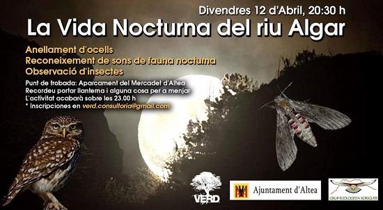 Medio Ambiente organiza una ruta para conocer las aves nocturnas y las mariposas de Altea