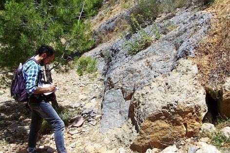 La Societat Espanyola de Paleontologia publica el model de gestió del MUPE d'Elx