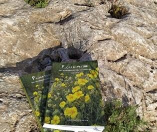 """La Concejalía de Medio Ambiente edita la segunda edición del I volumen de """"Flora Silvestre del Término Municipal de Orihuela"""""""