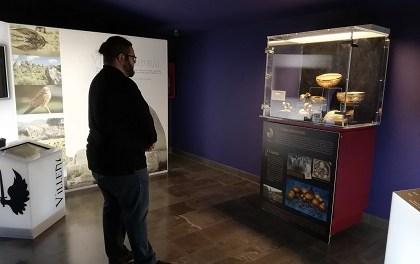 El Centre de Recepció de Visitants exposa la rèplica del Tresor de Villena