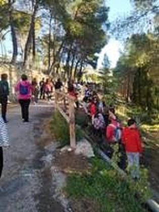 Noves rutes màgiques per Ibi i comarca