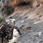 Ya han empezado las obras en el entorno de las pinturas rupestres de la Sarga de Alcoy