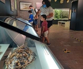 El Ayuntamiento de Ibi recibe para este año 5.000 euros de la Diputación para la realización de actividades culturales, musica-les y escénicas en el Museo de la Biodiversidad