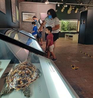 L'Ajuntament d'Ibi rep per a aquest any 5.000 euros de la Dipu-tació per a la realització d'activitats culturals, musicals i escèni-ques en el Museu de la Biodiversitat