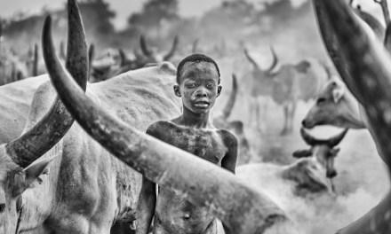 """El Concurs Internacional de Fotografia """"Alacant"""" rep 4.694 imatges de professionals i amateurs de 49 països"""