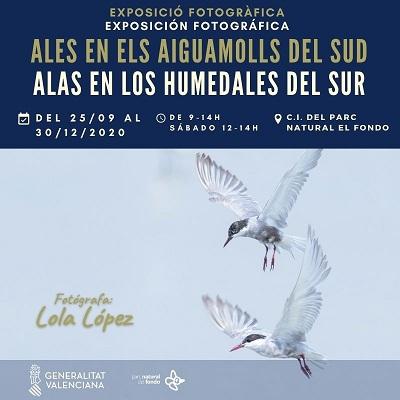 Inaugurada en el Parque Natural de El Hondo la exposición fotográfica 'Alas en los humedales del sur'