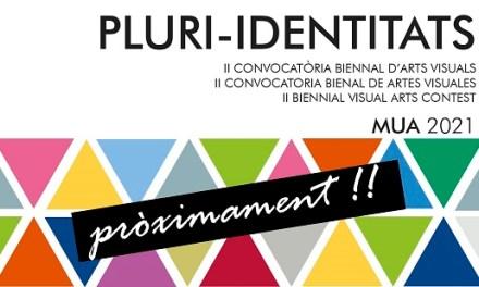 El Museo de la Universidad de Alicante convoca la segunda edición de la Convocatoria Bienal de Artes Visuales Pluri-Identitats