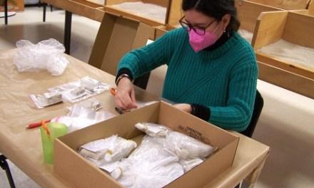 """El Museu Paleontològic d'Elx es consolida com a """"cantera"""" per a futures paleontòlogues"""
