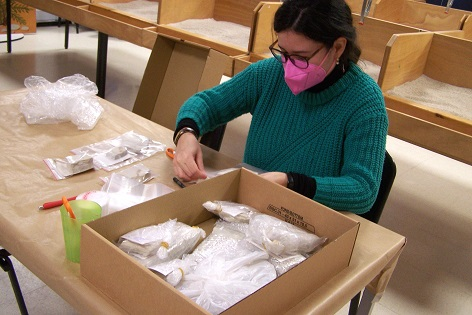 El Museo Paleontológico de Elche se consolida como una cantera de futuras paleontólogas