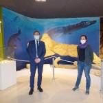 Un nuevo impulso para fomentar el papel social del Museo Paleontológico de Elche
