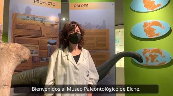 Nace 'Projecte Juràssic' en el MUPE para poner en valor la colaboración educativa