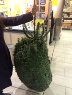 L'arbre embalat