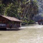 Loboc river cruise bohol 015