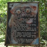 Philippine tarsier and wildlife sanctuary corella, bohol, philippines! 002