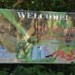 Philippine tarsier and wildlife sanctuary corella, bohol, philippines! 004