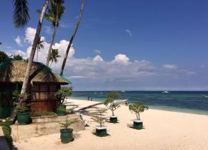 Discount rates at the domos native guest house, panglao, philippines!