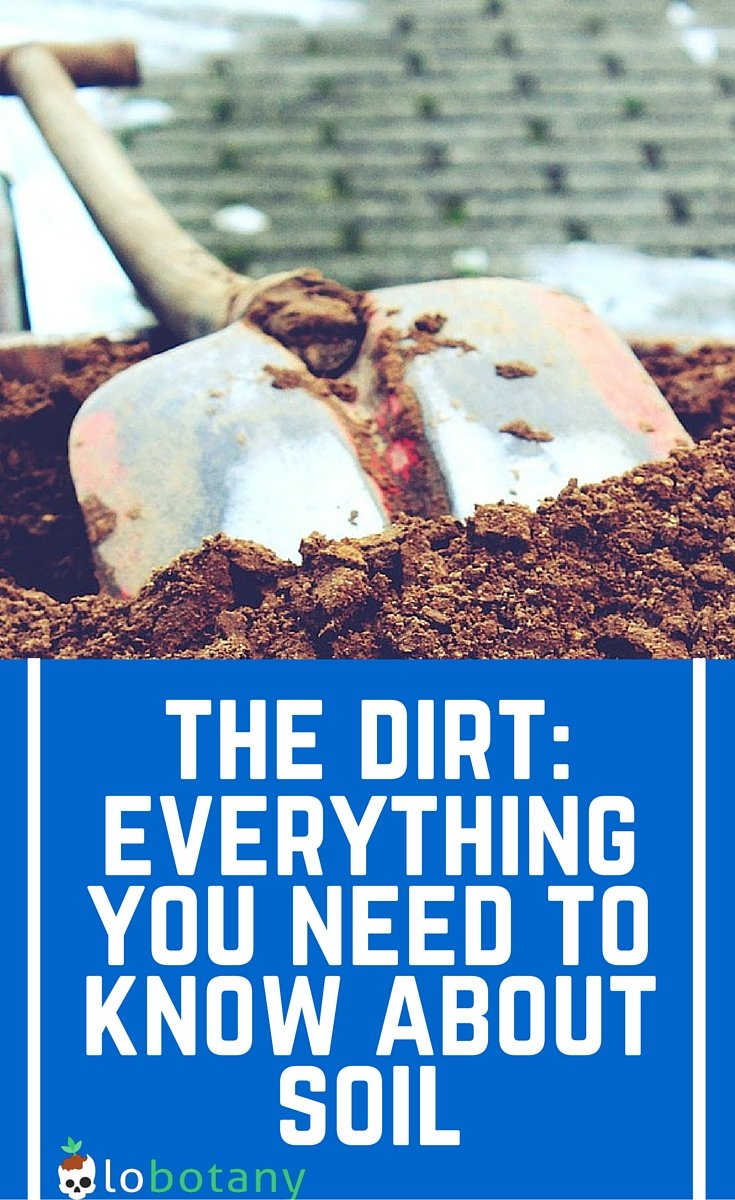 Everything You Need To Know About Choosing The Right Soil For Small Space Vegetable Gardening. Whether You Have A Container Garden On Your Patio Or Balcony, Or A Small Yard, Here's What Kind Of Dirt You Need In Your Garden In Order To Have A Healthy And Productive Garden.