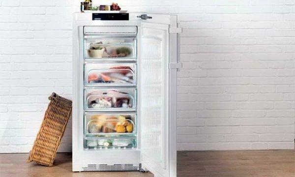 Советы, как выбрать хорошую морозильную камеру для дома ...