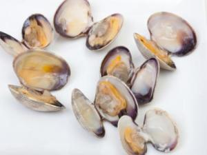 Authentic Littleneck Clams Used in Spaghetti Vongole