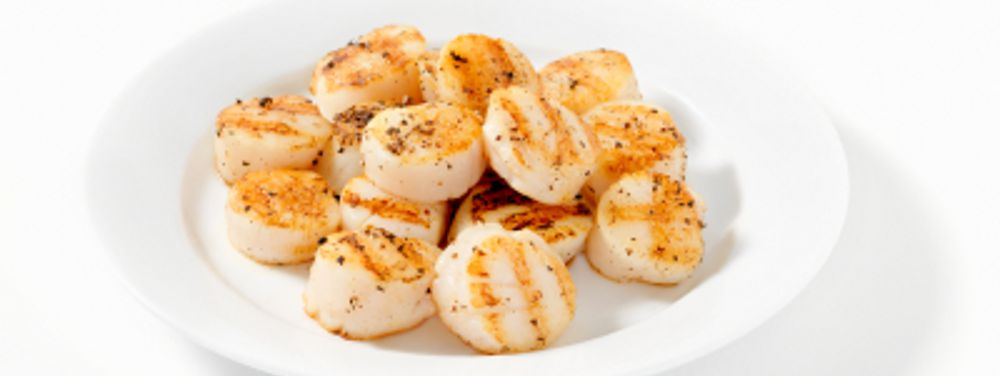 cape cod sea scallops on plate
