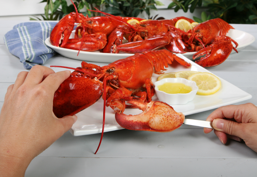 Eating Maine Lobster