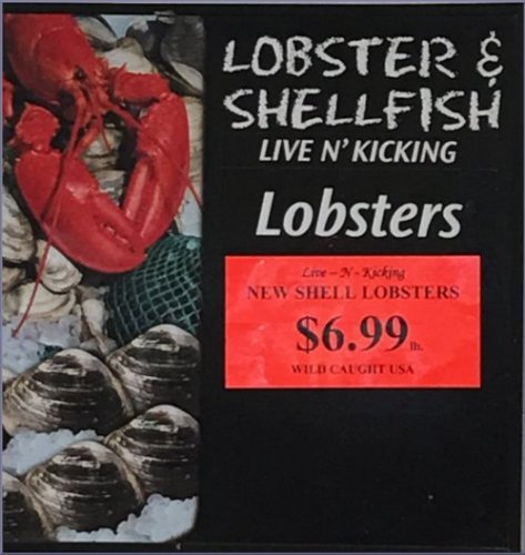 Maine New Shell Lobster Sale