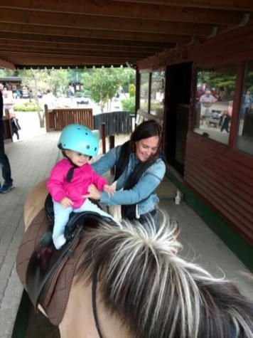 pony-jylland-zoo-768x1024