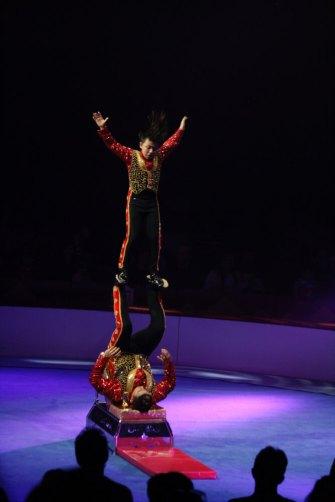 festival circ girona elefant dor 2